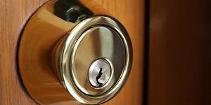 Commercial Door Lock internal